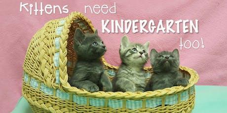 September 2019 Kitten Kindergarten tickets