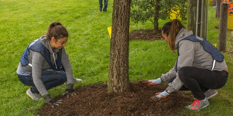 Plant A Tree Day in San Francisco tickets