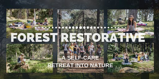 Forest Restorative: A Self-Care Retreat in Nature