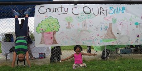Nurturing Neighbourhoods: County Court tickets