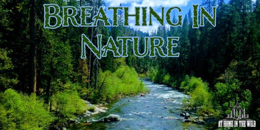 At Home in the Wild | Breathing In Nature