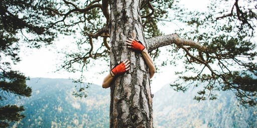 Sustainability Skills Workshop: Tree Care and Tree Planting