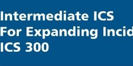 ICS-300 Intermediate - Albany County, January 17-19, 2020 - 3 days (AB/JM) tickets
