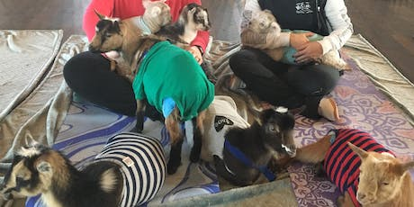 Baby Goat Yoga Bottle Feeding & Snuggle Time With Free Pint @ Goose Island! tickets
