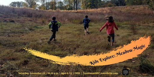 Kids Explore: Meadow
