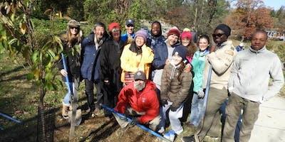 November Herring Run Park Tree Planting