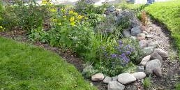 Pickering Blooms Garden Celebration