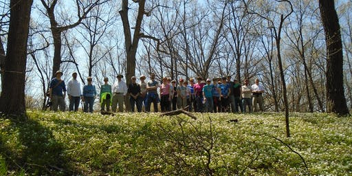 Guided Walk: Cap Sauers Nature Preserve