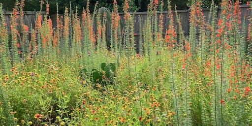 Botany Basics: Survive & Thrive