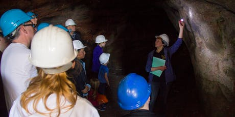 Fife Doors Open Day - Wemyss Caves Pictish Carvings - Guided Tour and Museum tickets