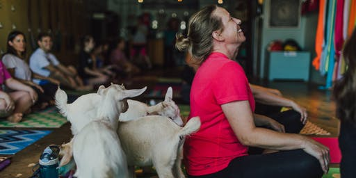 Yoga with Baby Goats