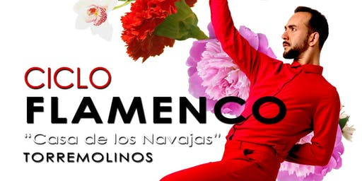 Ciclo Flamenco En la Casa de Los Navajas De Torre