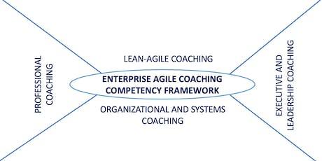 Certified Enterprise Agile Coaching Masterclass (LAI-EAC) Washington D.C. tickets
