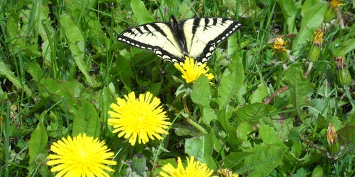 6th Joint Meeting: Entomological Societies of Saskatchewan and Alberta