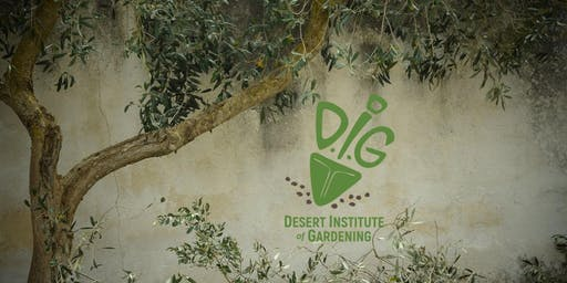Desert Institute of Gardening- Tree Selection, Planting & Care