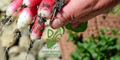 Desert Institute of Gardening- Your Backyard Vegetable Garden