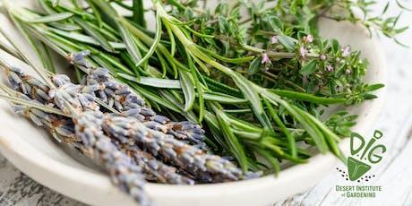 Desert Institute of Gardening- Grow Fresh Herbs for Your Kitchen tickets