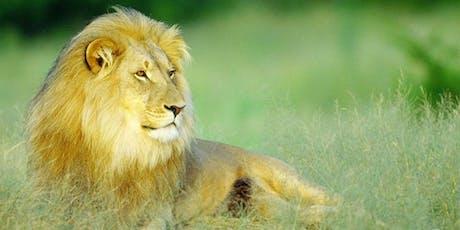 Africa Safari Presentation - Which Safari is Right For You? tickets