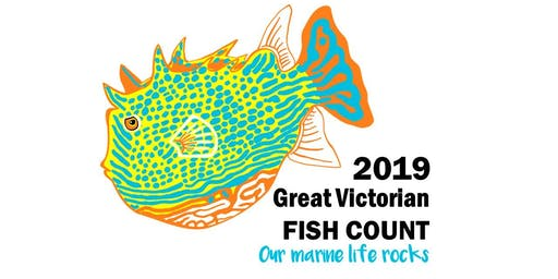 2019 Great Victorian Fish Count- Our Marine Life Rocks