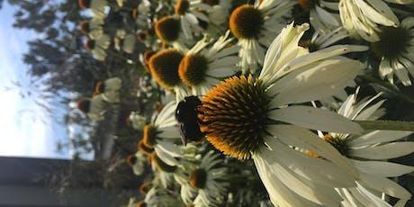 Autumn Bee Workshop tickets