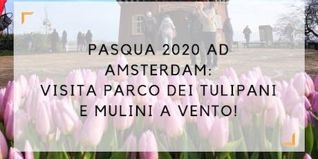 Pasqua 2020 ad Amsterdam: visita parco dei tulipani e mulini a vento in LINGUA ITALIANA biglietti