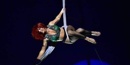 Circus Gerbola in Swords 2019
