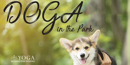 Doga in the Park