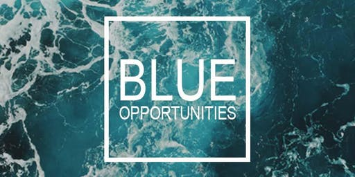 Blue Opportunities
