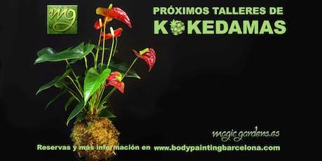 Taller de Kokedamas /Kokedamas Workshop tickets