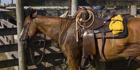 Osceola County 4-H Horse Clinic-Ranch Clinic by Jennifer Woodruff tickets
