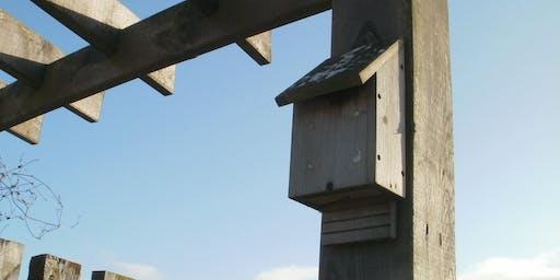RSPB Saltholme Bat boxes