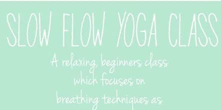 Slow Flow Yoga at Urban Vines!