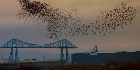 RSPB Saltholme Soup and Starlings tickets