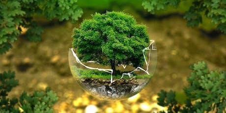 Transition écologique et enjeux planétaires : une obligation collective billets