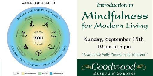 Introduction to Mindfulness for Modern Living