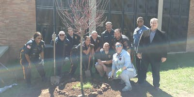 Plant A Tree Day in Newark