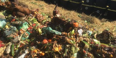 Ecologies of Transition Roundtable: We Are All Compost