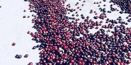 Brazilian Specialties - new coffee origins, new perspectives tickets