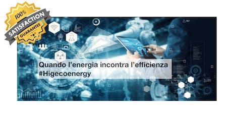 Energy Manager - Il futuro di una professione sempre più ricercata biglietti