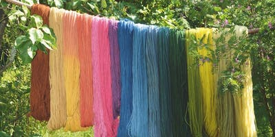 Farmhouse Family Day: Harvest Colors