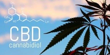 CBD Exclusive Event