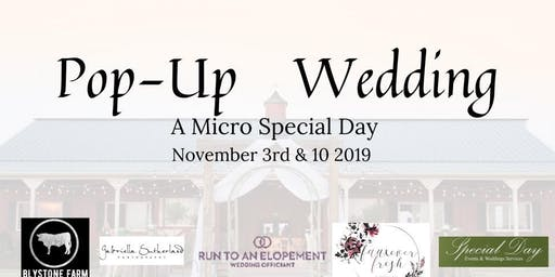 Pop-up Wedding (Micro Special Day)