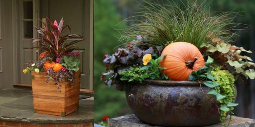 Moana Workshops: Beyond Mums - Potting Fall Porch Containers