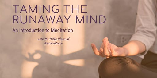 Taming the Runaway Mind: An introduction to meditation