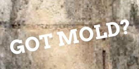 Mold: What you Need to Know About Mold and How to Read Air Sampling Reports