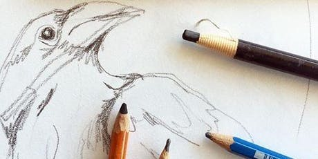 Beginner Drawing with Carol Coogan tickets