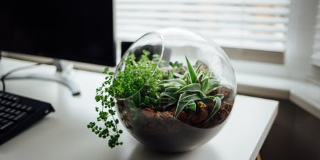 Tropical Terrarium Workshop tickets