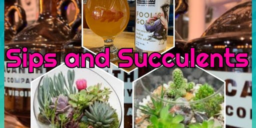 Sips and Succulents