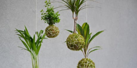 Make Your Own Kokedama tickets