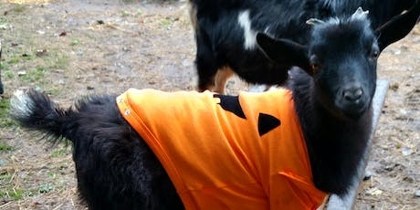Goat Yoga/End of Season Costume Party tickets